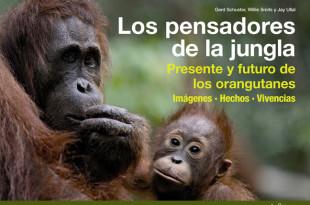 orangutanes-pensadores-de-la-junga1